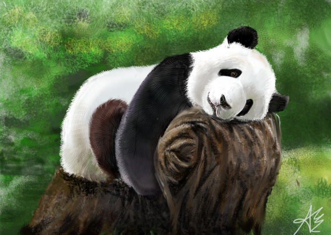 Illustrated with XStylus Touch on iPad | Panda by Ariel Yune